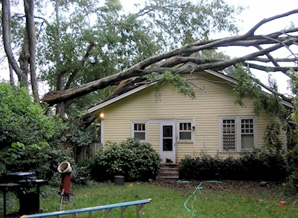 Storm Damage in Camden County serving Sicklerville, NJ